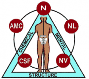 What is Applied Kinesiology (AK)